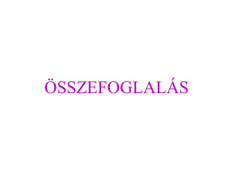 ÖSSZEFOGLALÁS