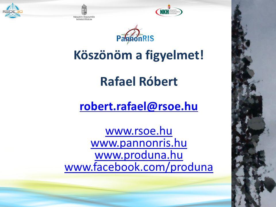 Köszönöm a figyelmet! Rafael Róbert
