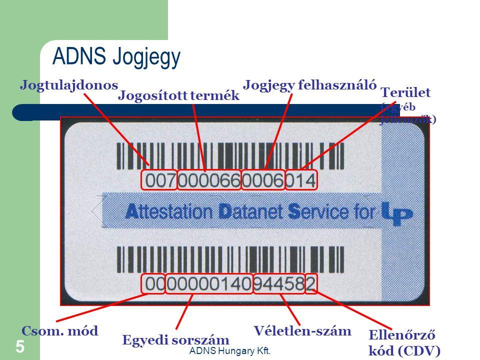 ADNS Jogjegy Jogtulajdonos Jogjegy felhasználó Jogosított termék