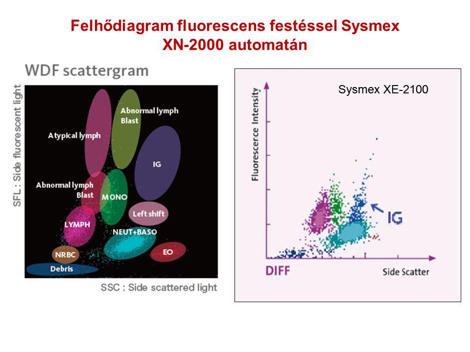 Felhődiagram fluorescens festéssel Sysmex XN-2000 automatán