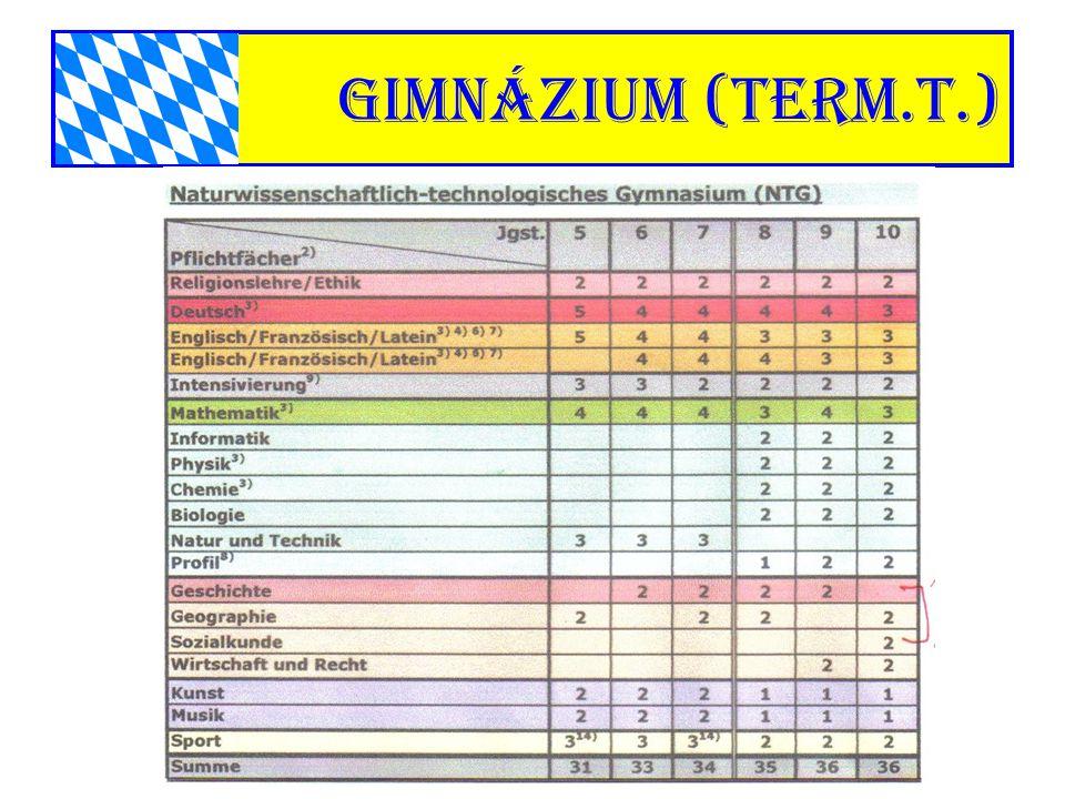gimnázium (term.t.)