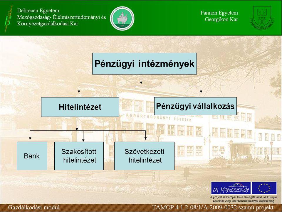 Pénzügyi intézmények Hitelintézet Pénzügyi vállalkozás Bank