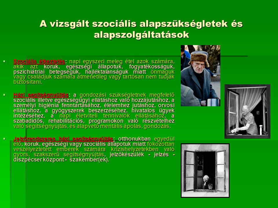 A vizsgált szociális alapszükségletek és alapszolgáltatások