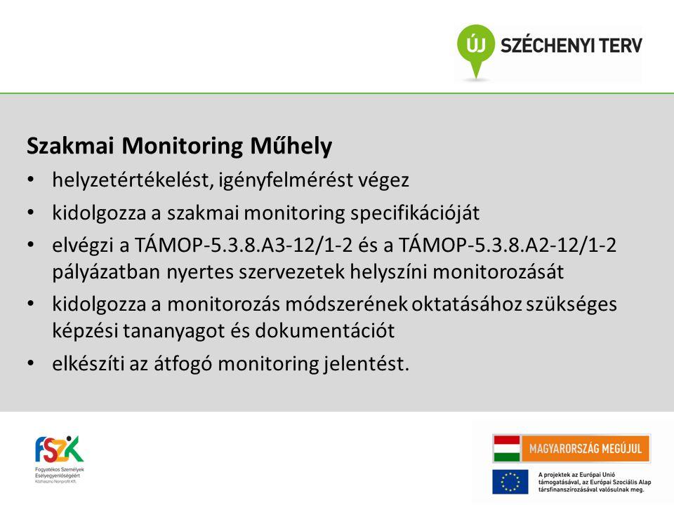 Szakmai Monitoring Műhely
