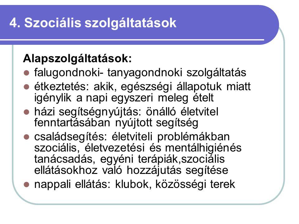 4. Szociális szolgáltatások