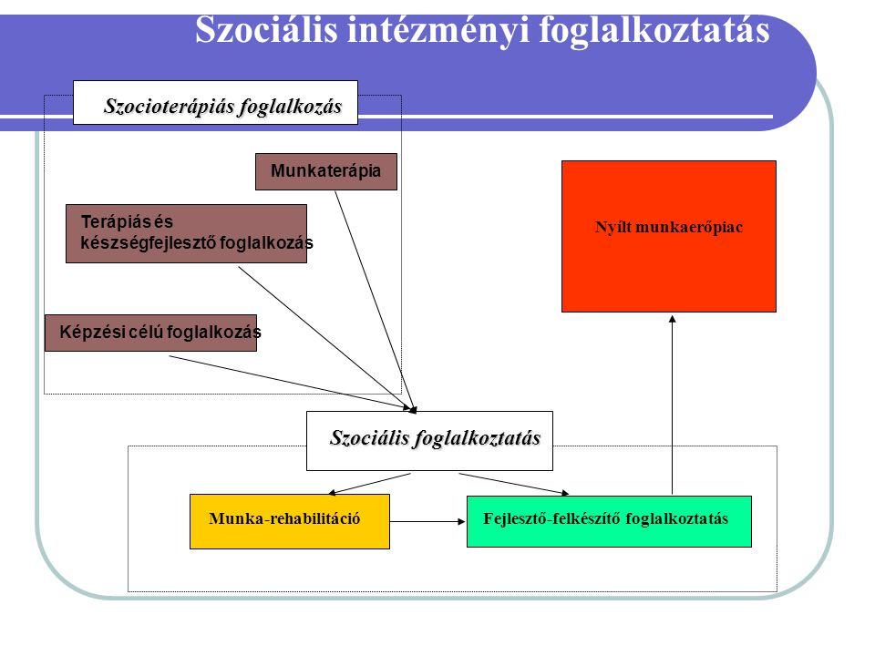 Szociális intézményi foglalkoztatás