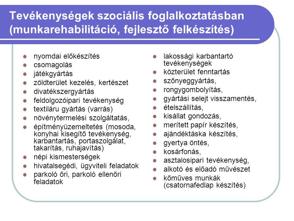 Tevékenységek szociális foglalkoztatásban (munkarehabilitáció, fejlesztő felkészítés)