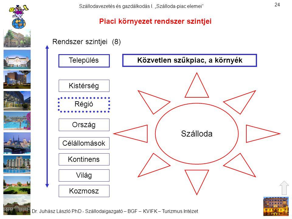 Piaci környezet rendszer szintjei Közvetlen szűkpiac, a környék