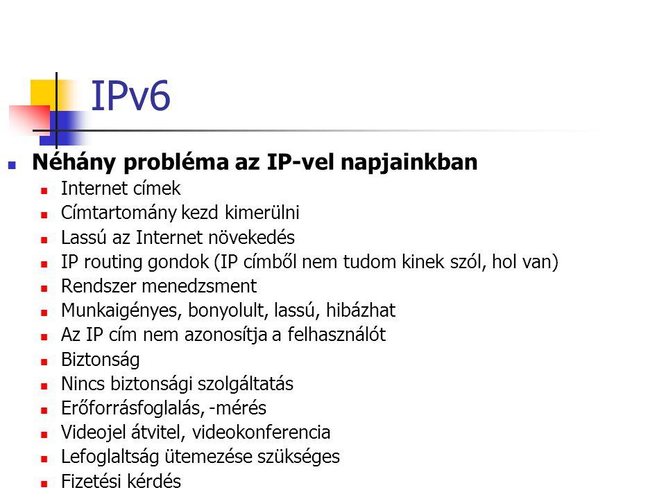 IPv6 Néhány probléma az IP-vel napjainkban Internet címek