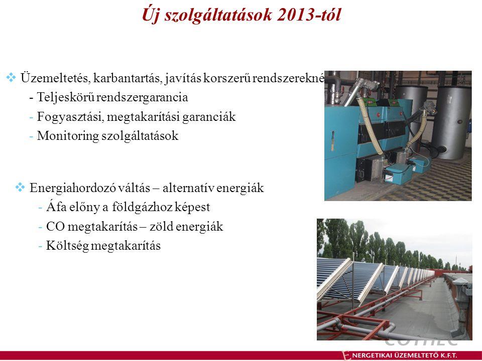 Új szolgáltatások 2013-tól