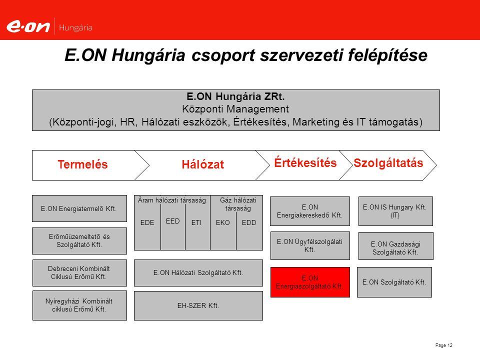 E.ON Hungária csoport szervezeti felépítése