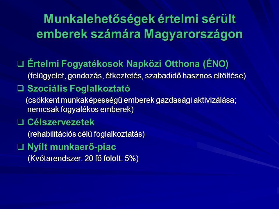 Munkalehetőségek értelmi sérült emberek számára Magyarországon