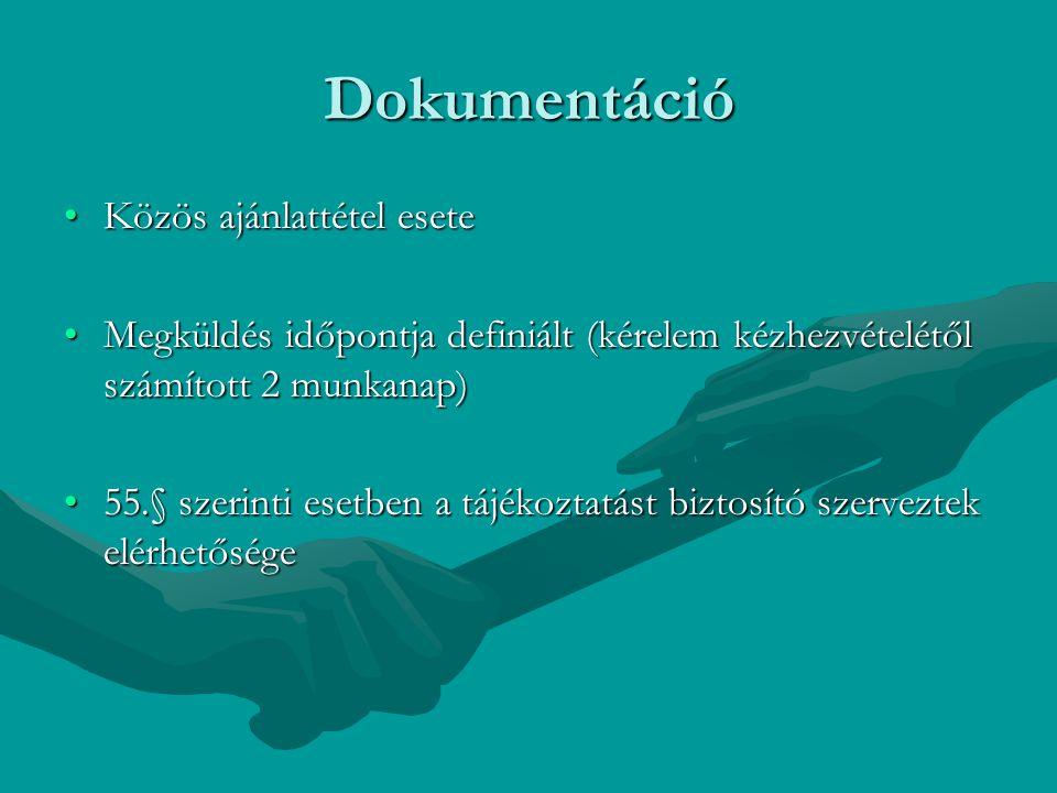 Dokumentáció Közös ajánlattétel esete