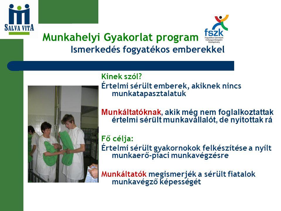 Munkahelyi Gyakorlat program Ismerkedés fogyatékos emberekkel