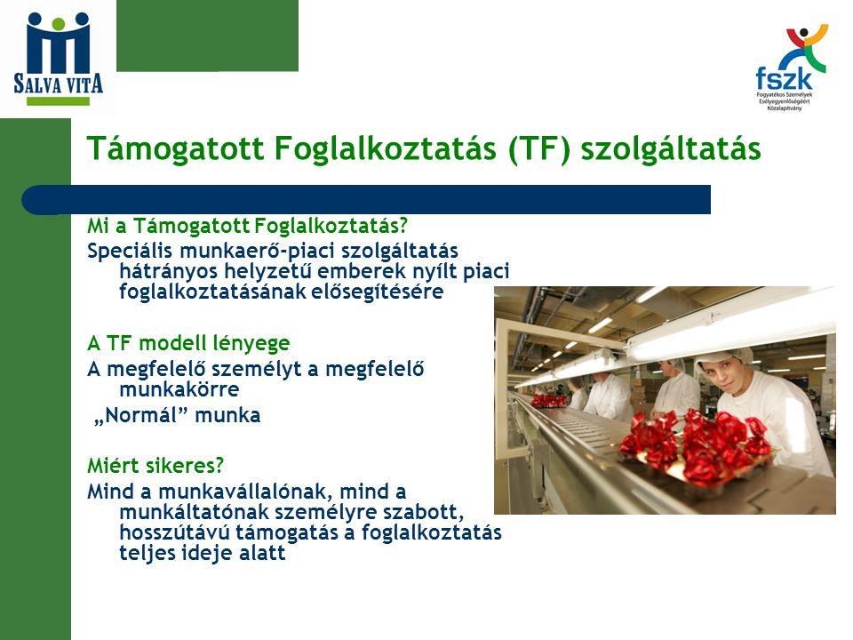 Támogatott Foglalkoztatás (TF) szolgáltatás