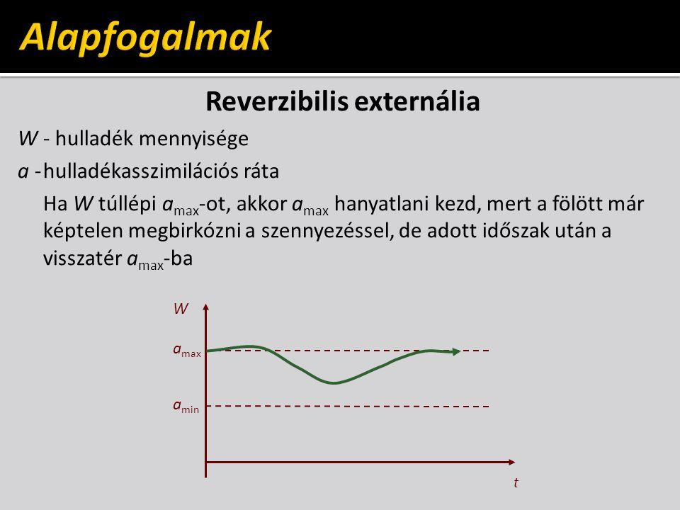 Reverzibilis externália