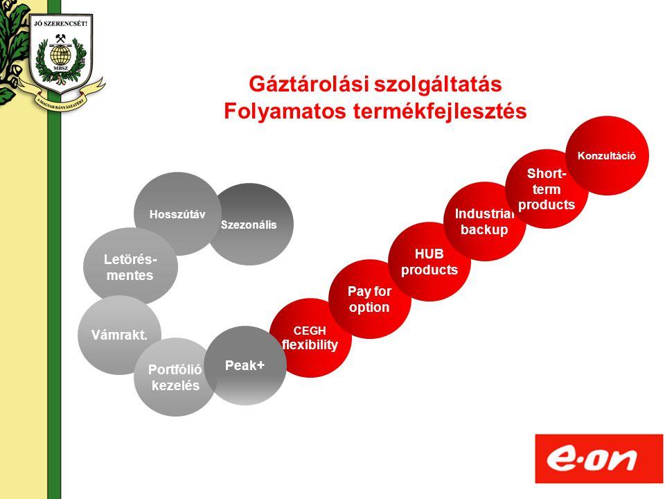 Gáztárolási szolgáltatás Folyamatos termékfejlesztés