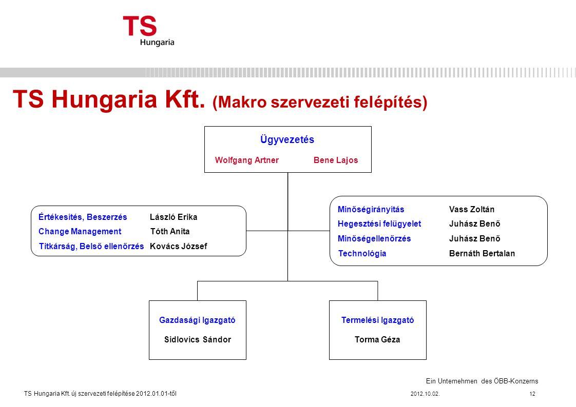 TS Hungaria Kft. (Makro szervezeti felépítés)