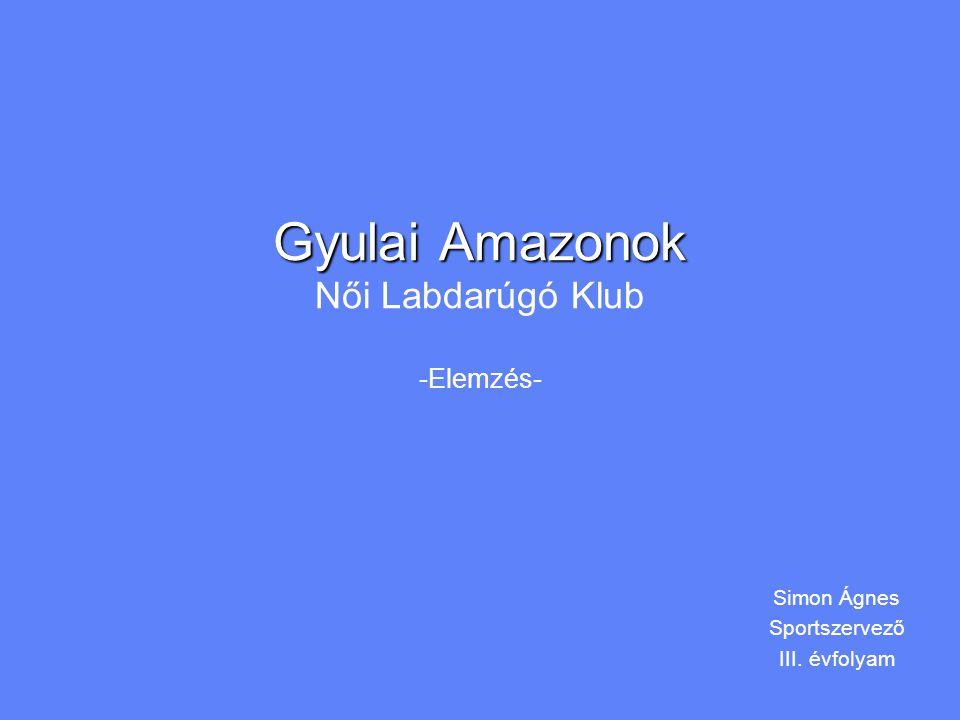 Gyulai Amazonok Női Labdarúgó Klub -Elemzés-