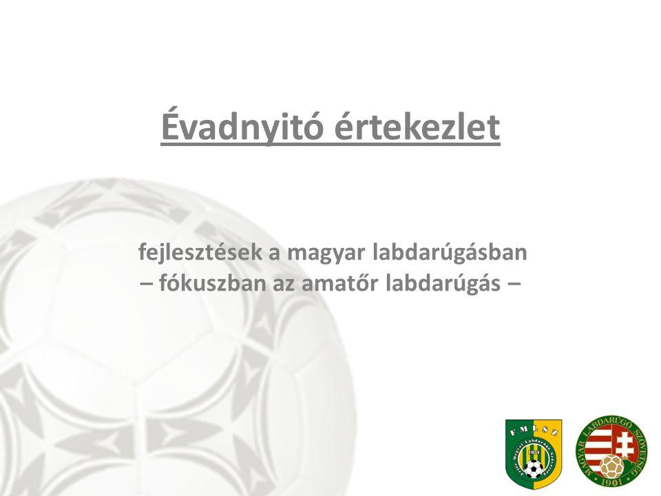 fejlesztések a magyar labdarúgásban – fókuszban az amatőr labdarúgás –
