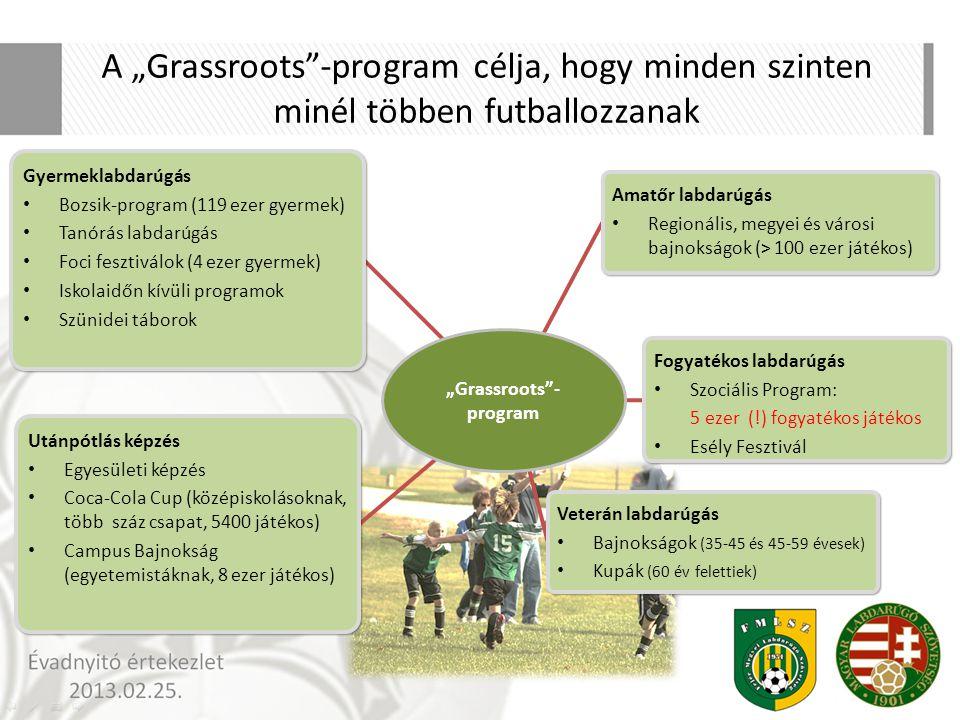"""Grassroots -program"