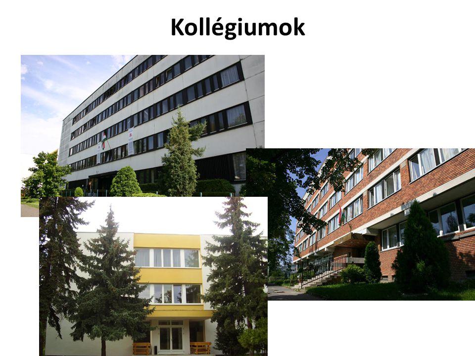 Kollégiumok