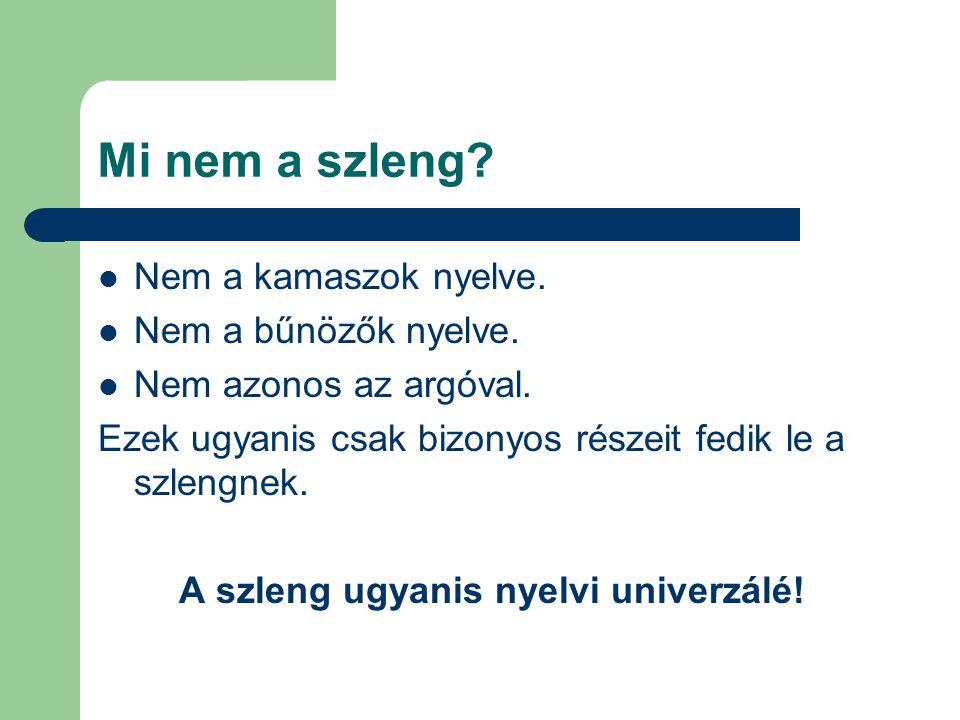 A szleng ugyanis nyelvi univerzálé!