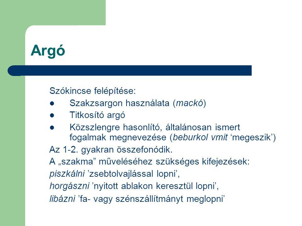 Argó Szókincse felépítése: Szakzsargon használata (mackó)
