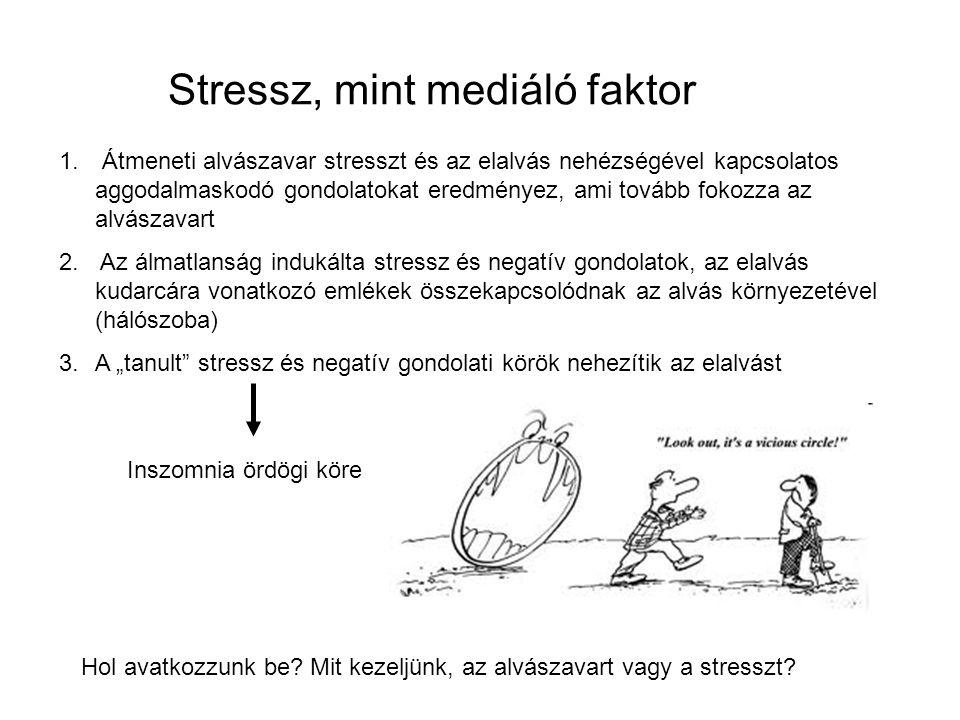 Stressz, mint mediáló faktor
