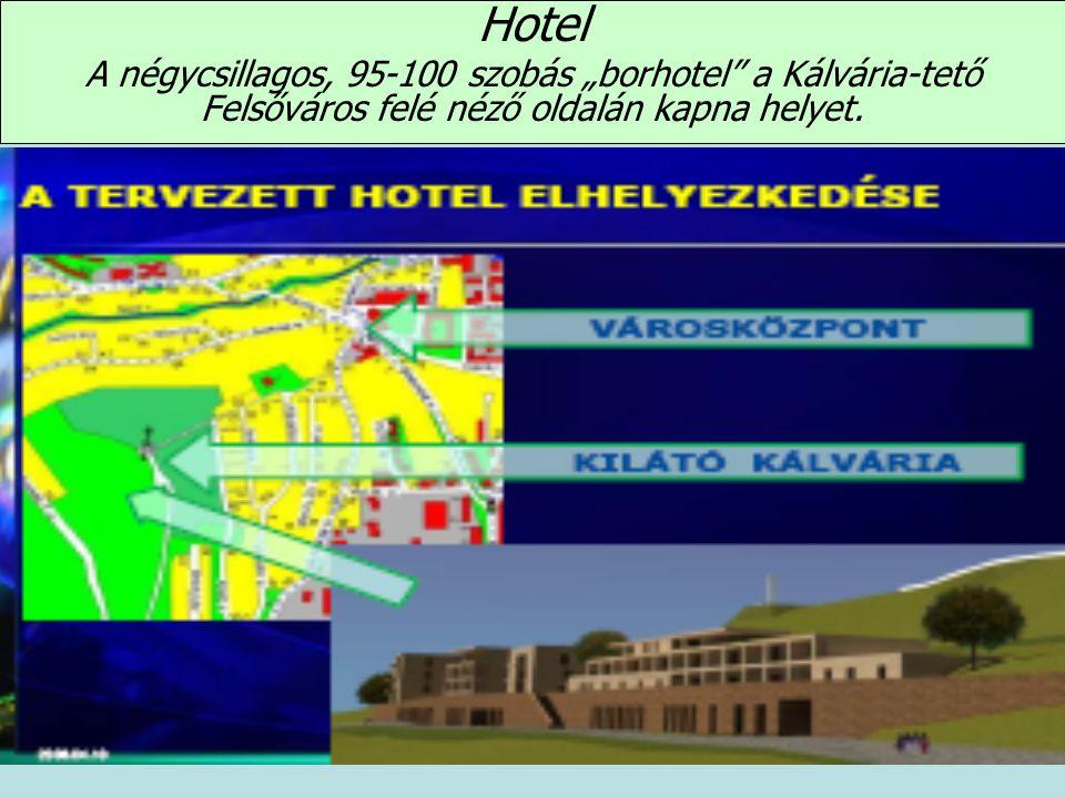 """Hotel A négycsillagos, 95-100 szobás """"borhotel a Kálvária-tető Felsőváros felé néző oldalán kapna helyet."""