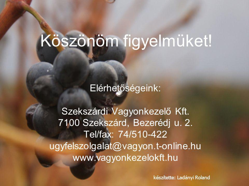 Szekszárdi Vagyonkezelő Kft.
