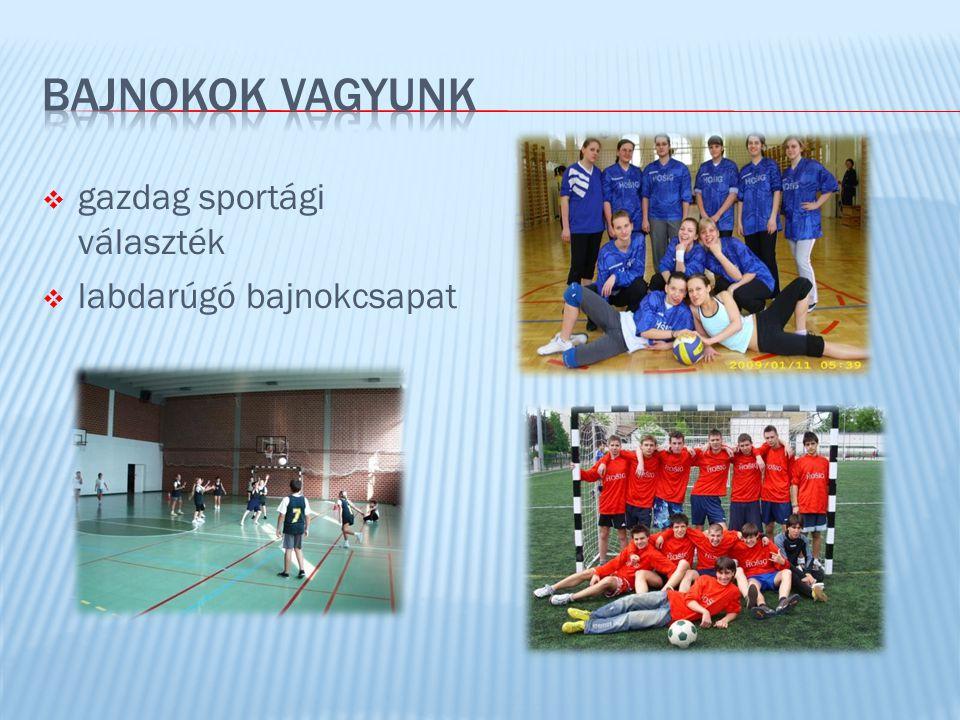 BAJNOKOK VAGYUNK gazdag sportági választék labdarúgó bajnokcsapat