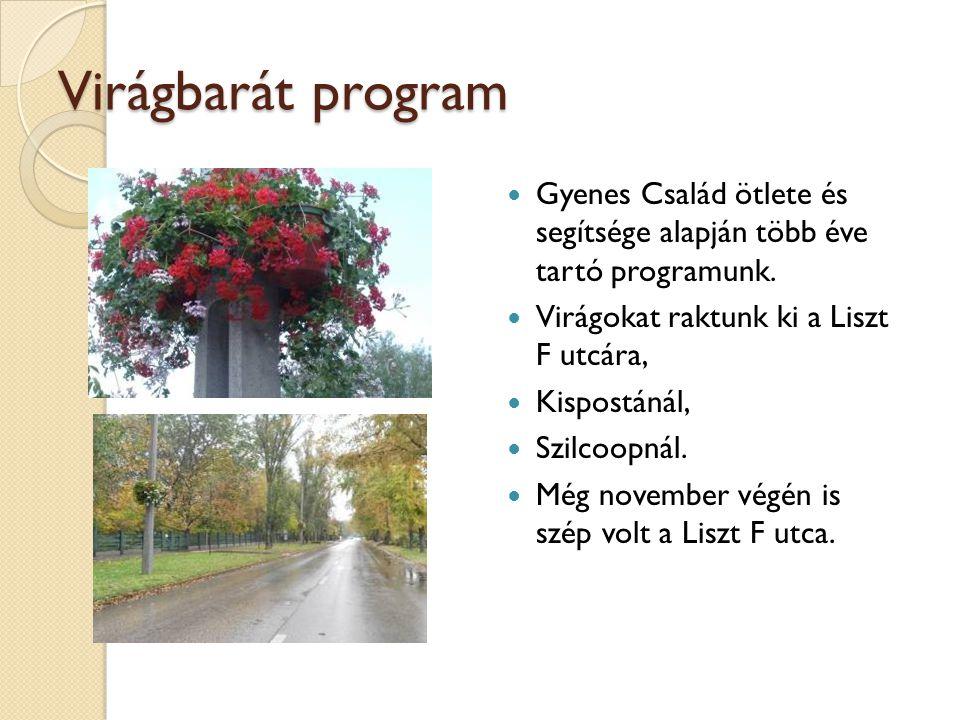 Virágbarát program Gyenes Család ötlete és segítsége alapján több éve tartó programunk. Virágokat raktunk ki a Liszt F utcára,