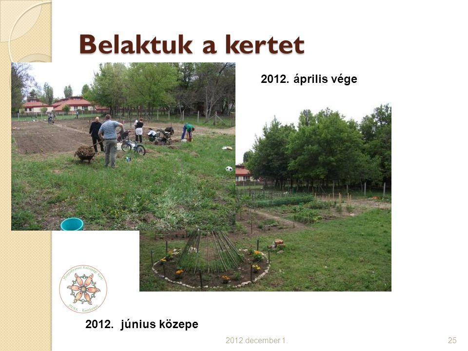 Belaktuk a kertet 2012. április vége 2012. június közepe