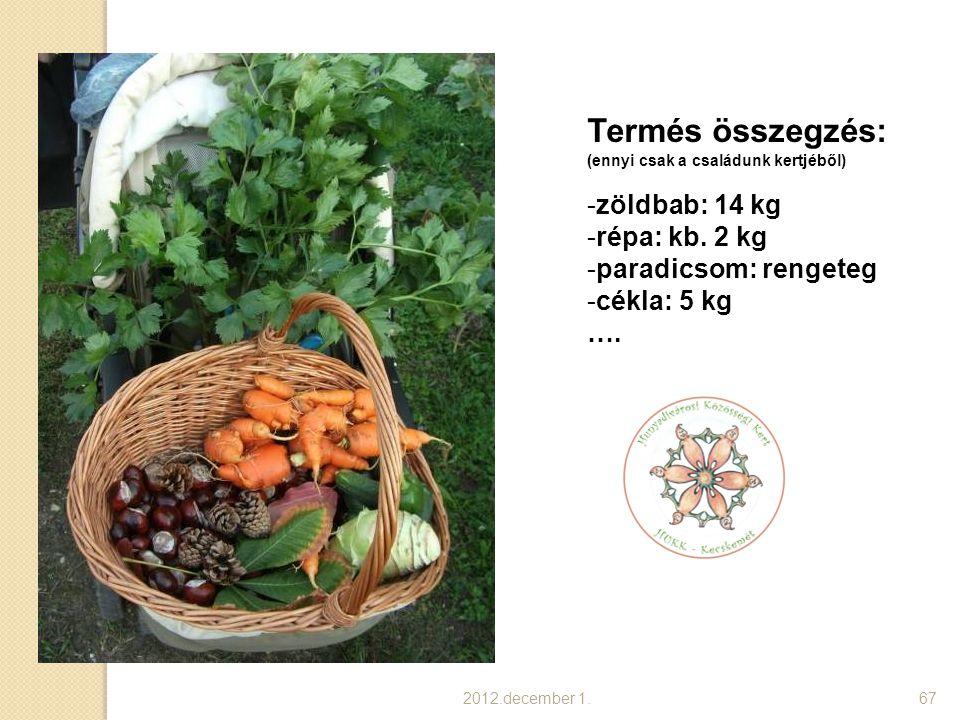 Termés összegzés: zöldbab: 14 kg répa: kb. 2 kg paradicsom: rengeteg