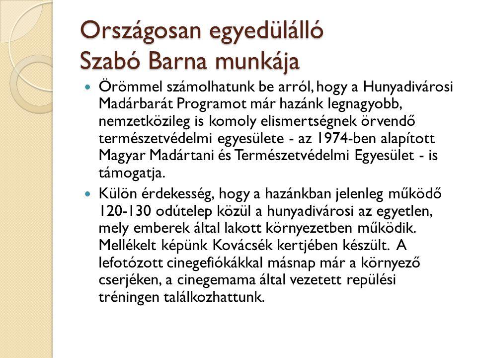 Országosan egyedülálló Szabó Barna munkája