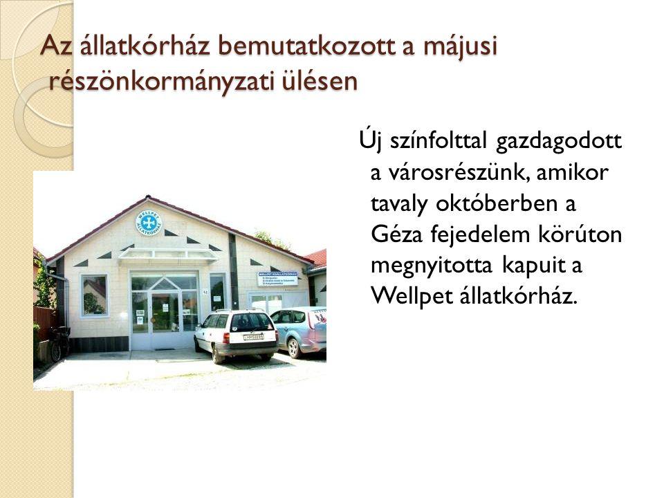 Az állatkórház bemutatkozott a májusi részönkormányzati ülésen