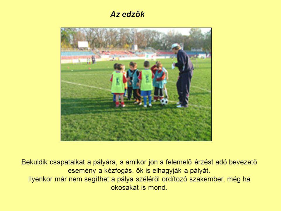 Az edzők