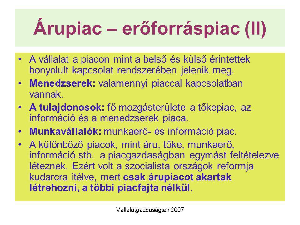 Árupiac – erőforráspiac (II)