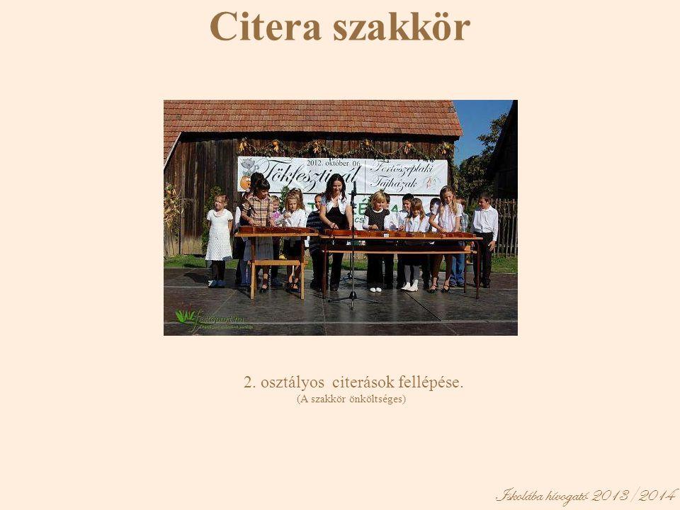 Citera szakkör Iskolába hívogató 2013/2014