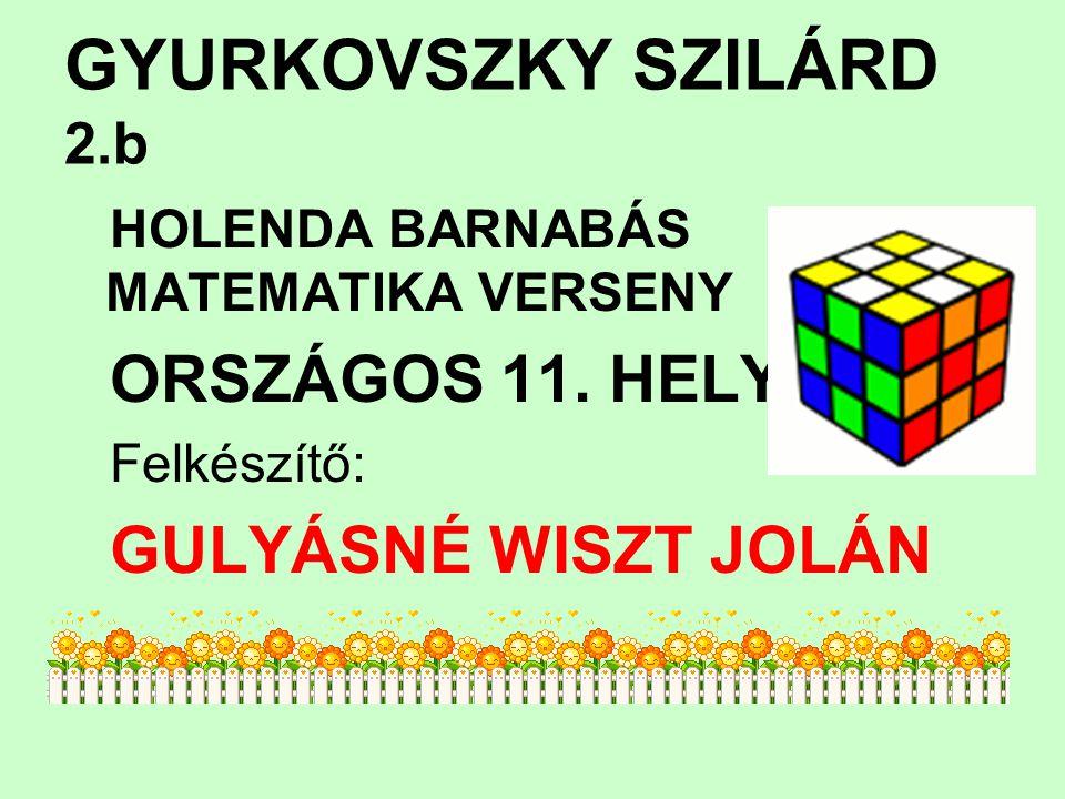 GYURKOVSZKY SZILÁRD 2.b HOLENDA BARNABÁS MATEMATIKA VERSENY