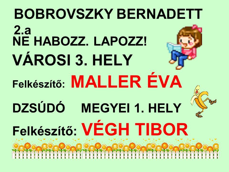 BOBROVSZKY BERNADETT 2.a