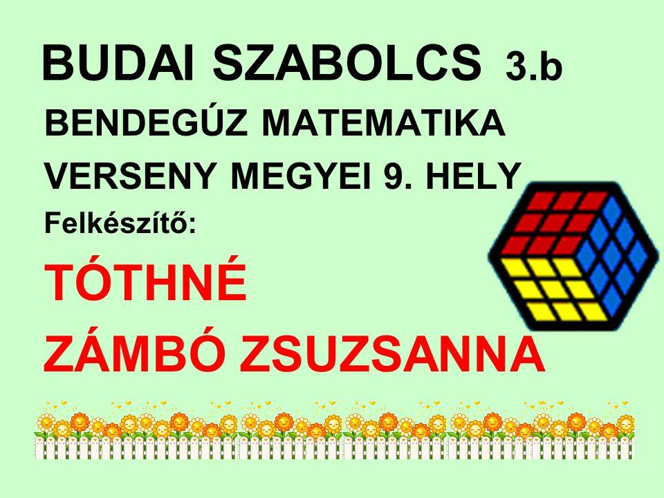 BUDAI SZABOLCS 3.b TÓTHNÉ ZÁMBÓ ZSUZSANNA BENDEGÚZ MATEMATIKA