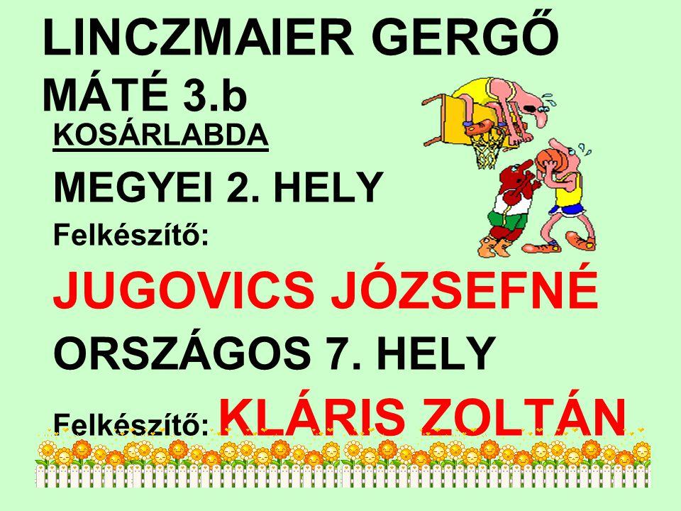 LINCZMAIER GERGŐ MÁTÉ 3.b