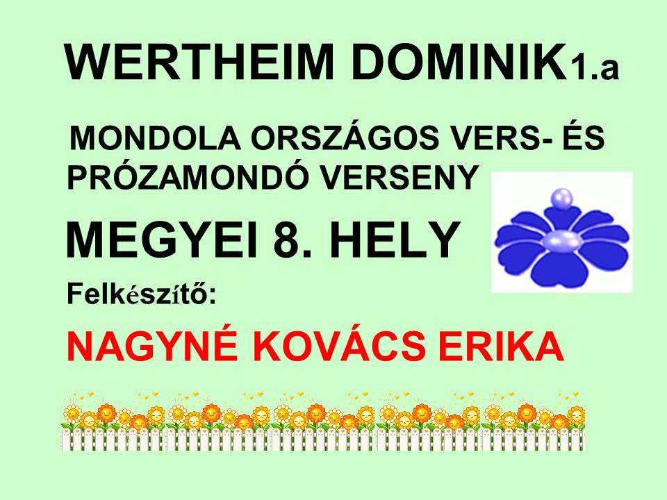 WERTHEIM DOMINIK 1.a MEGYEI 8. HELY