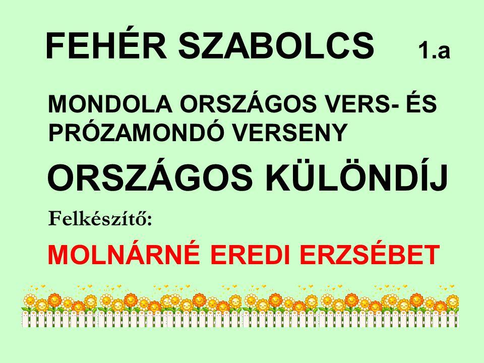 ORSZÁGOS KÜLÖNDÍJ FEHÉR SZABOLCS 1.a Felkészítő: