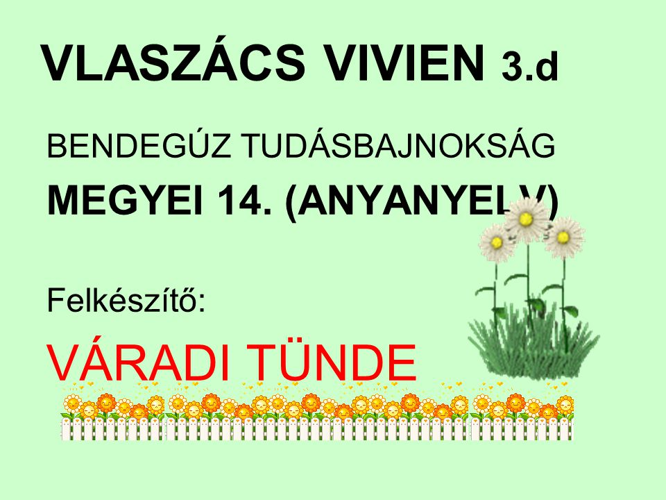 VLASZÁCS VIVIEN 3.d VÁRADI TÜNDE MEGYEI 14. (ANYANYELV)