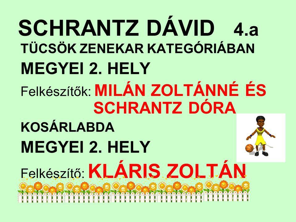 SCHRANTZ DÁVID 4.a MEGYEI 2. HELY TÜCSÖK ZENEKAR KATEGÓRIÁBAN