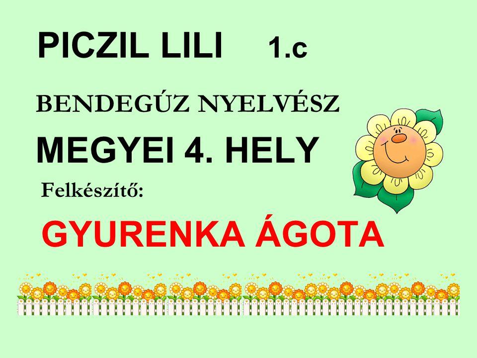 PICZIL LILI 1.c BENDEGÚZ NYELVÉSZ Felkészítő: GYURENKA ÁGOTA