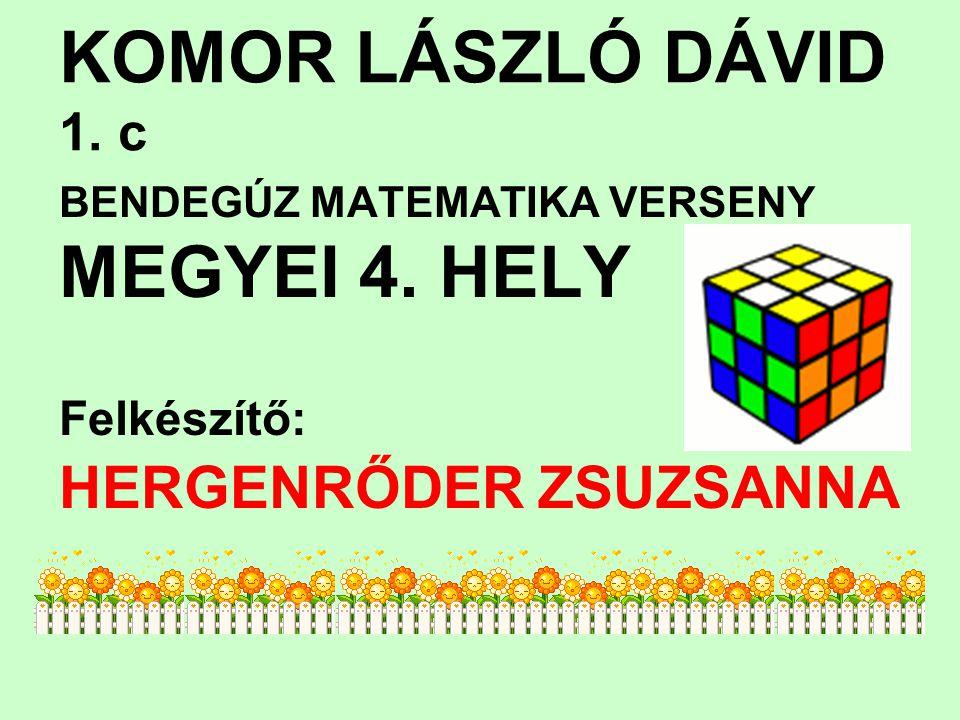 KOMOR LÁSZLÓ DÁVID 1. c MEGYEI 4. HELY HERGENRŐDER ZSUZSANNA